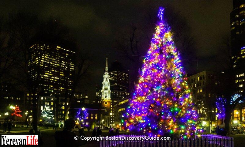 x800-xmas-tree-common-park-st-5x3.jpg.pagespeed.ic.MBR-xjFgEY